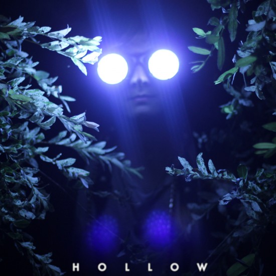 Zoo Owl - Hollow cover