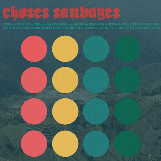 Choses Sauvages –  L'Épave Trouée